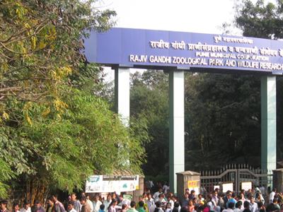 Zoo in Pune - Rajiv Gandhi Udyan And Snake Garden